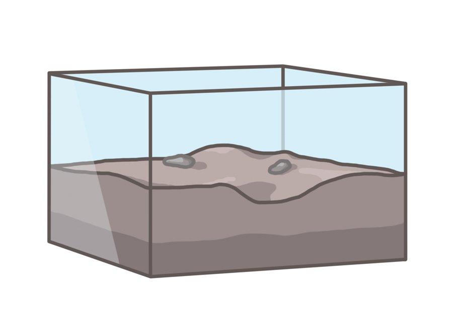formikarium tank observera myrbo